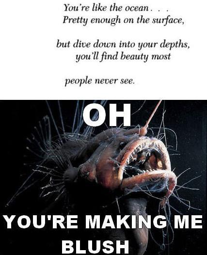 you make me blush meme - photo #19