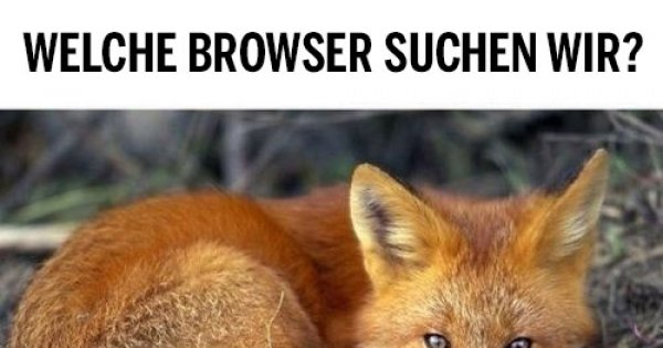 welche browser