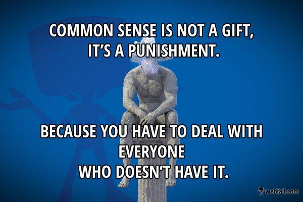 post2 common sense meme picture webfail fail pictures and fail videos