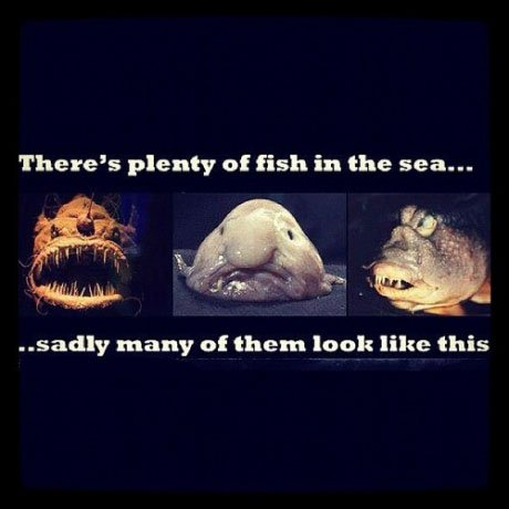 post2 there's plenty of fish in the sea meme picture webfail fail