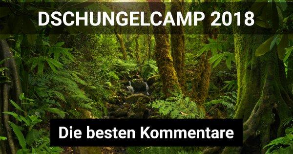dschungelcamp 2018 kandidaten
