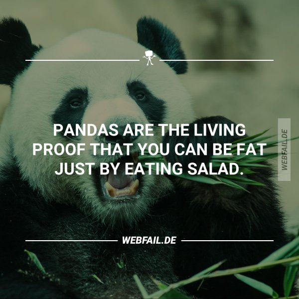 Pandas Are The Living Proof Webfail Fail Pictures And